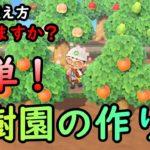 【あつ森】初心者必見 綺麗な果樹園 作り方 講座 【島クリエイター】