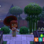 【あつ森】竹やぶのある和風エリアをつくってみました!ジャスミンの家も移設【島クリエイター】【あつまれどうぶつの森】