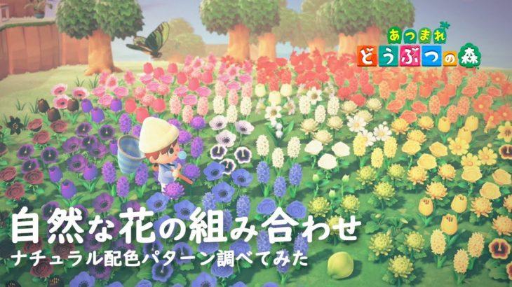 【あつ森】花畑や花壇を自然に見せる色の組み合わせを調べてみた。【あつまれどうぶつの森】