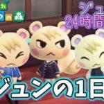 【あつ森】ジュンの1日!24時間密着してみたらかっこかわいすぎた【あつまれどうぶつの森】【Animal Crossing】