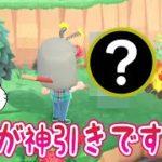 【あつ森】離島ガチャで新住民のアノ子がきたああああああああああああああ【しゃちくるみ/あつまれどうぶつの森/Animal Crossing/シュガートース島/くるみ/ちゃちゃまる/ジャック/ラムネ】