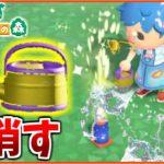 【あつ森】置き花火にジョウロで水やりしたらどうなるのか?【あつまれどうぶつの森検証】