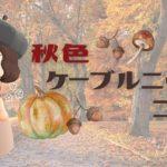 【あつ森 マイデザ】🍂超簡単!秋服…第一弾❗️👗秋色ケーブルニットコーデの描き方!! 【服 マイデザイン】【あつまれどうぶつの森】ACNH【2人実況#131】