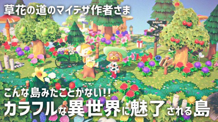 【島訪問】草花の道のマイデザイン作者様!カラフルな異世界に魅了される島旅行【夢番地公開 | あつ森 | あつまれどうぶつの森 | Animal Crossing】