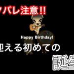 【あつ森】※ネタバレ注意!コスモス島で迎える初めての誕生日