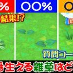 【あつ森 検証】3種の雑草の出現率を計算したら衝撃の事実が…!!皆さんは知ってましたか?質問コーナーもやるよ【うさごん】