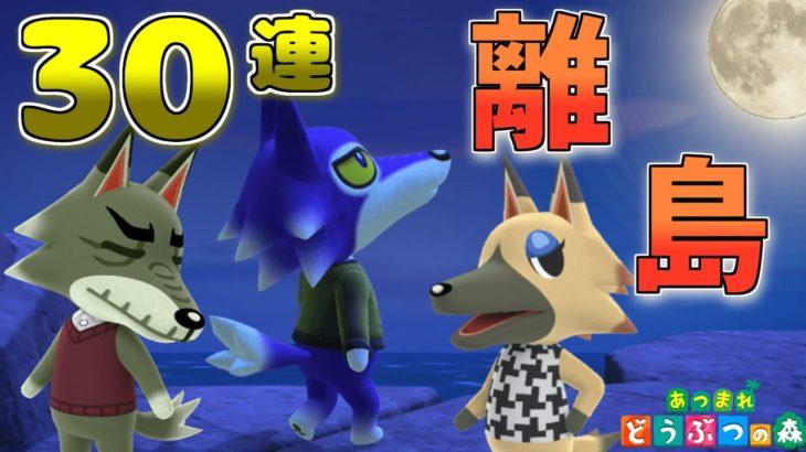 【あつ森】夜の離島はオオカミが多い!ビンタを狙って離島ガチャ30連【ゆっくり実況】