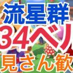 【あつ森】ライブ参加型 カブ価624ベルや流星群 かぶ手数料なし