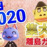 【あつ森】離島ガチャ「2020年ラスト」に大ハプニングが発生