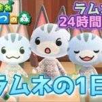 【あつ森】ラムネの1日!24時間密着してみたらキュートすぎた【あつまれどうぶつの森】【Animal Crossing】