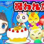 ○○歳の誕生日をみんなに祝って欲しい!!【誕生日/ちゃちゃまる】【あつ森/AnimalCrossing】