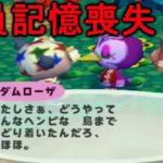 【どうぶつの森e+】無人島に特別な住民が!なのに全員記憶喪失!?【PART56】