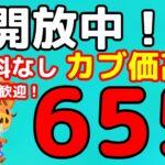 【あつ森】初見さん歓迎です 「655ベル」の島開放中!【カブ価】【あつ森 参加型】