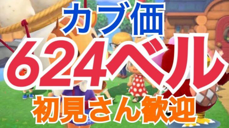 【あつ森】ライブ参加型  カブ価641ベル624ベルなど かぶ手数料なし