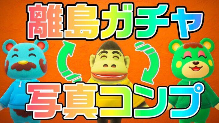 【生放送】あつ森「離島ガチャと写真コンプリート」を行ったり来たりする配信vol.3
