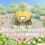 【あつ森】ナチュラルな博物館周り【島クリエイト】
