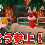 【ポケ森】1号が来たーーー!かんわいいいいい!【どうぶつの森ポケットキャンプ】